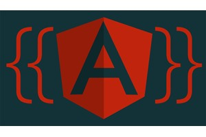 AngularJS forms